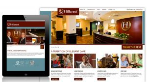 custom web development hillcrest liquisite